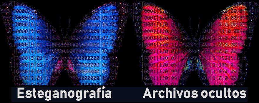 Esteganografía: ocultando archivos en Windows